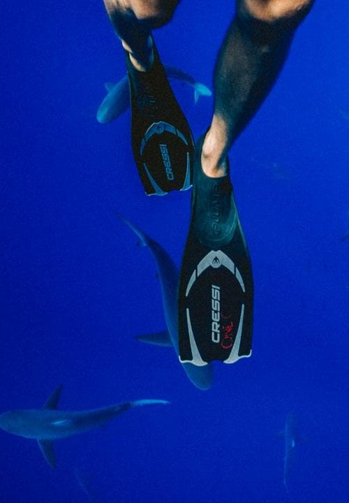 best scuba fins for diving