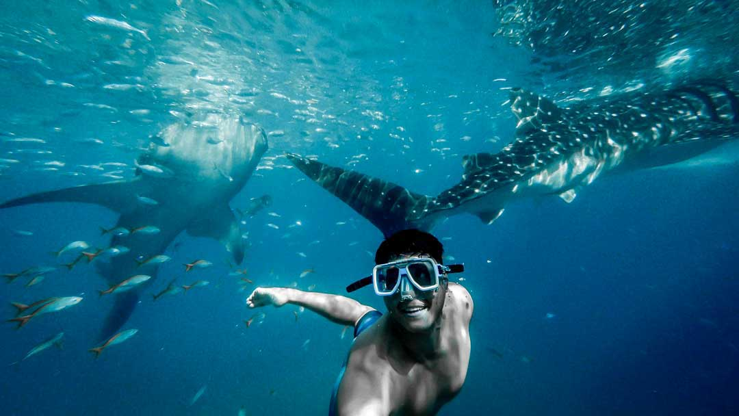 where is the best place to go snorkeling in the caribbean