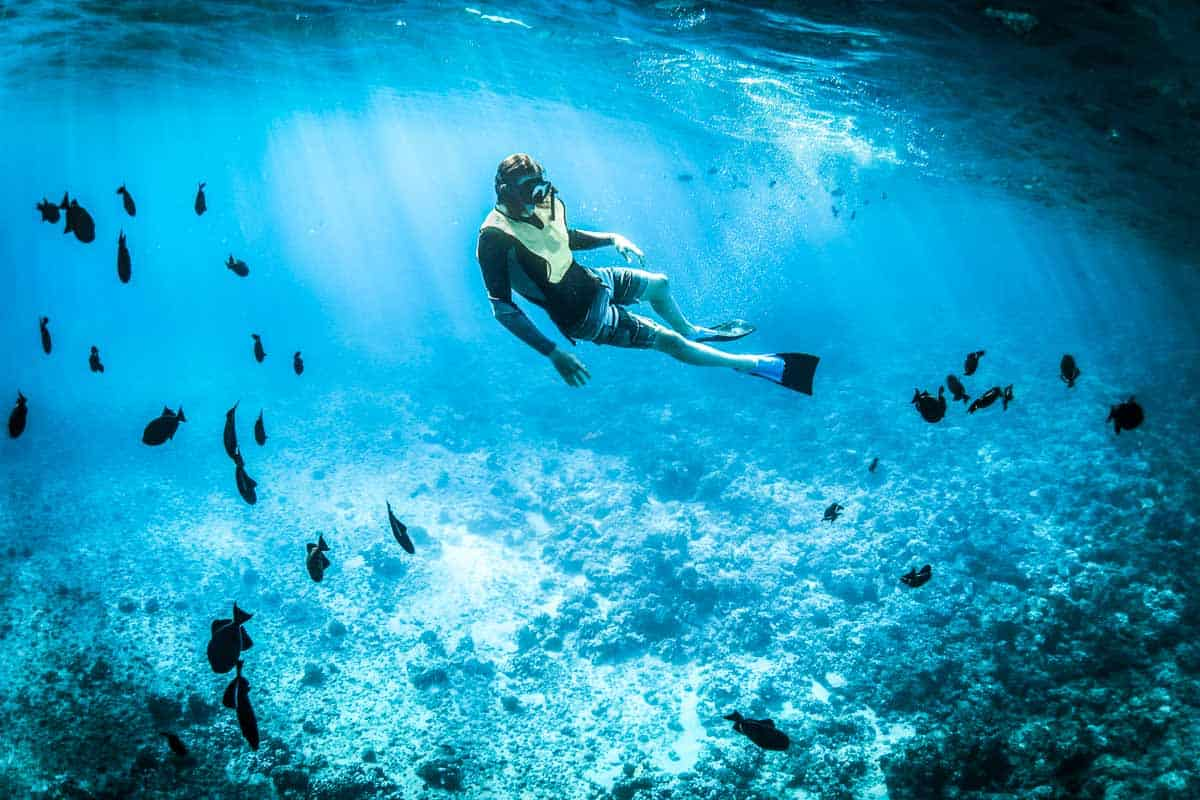 snorkeling in san pedro