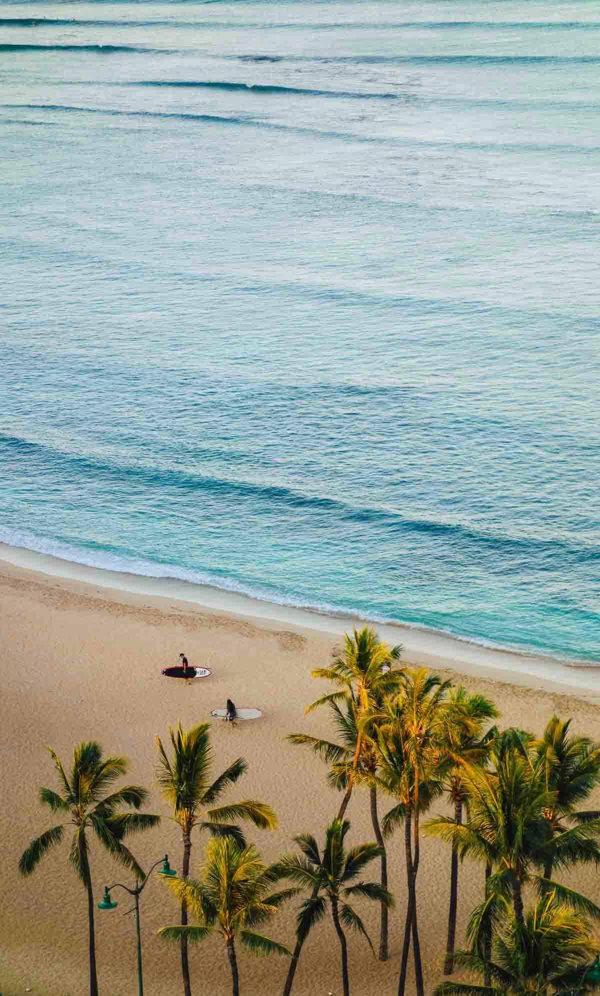 snorkel waikiki beach