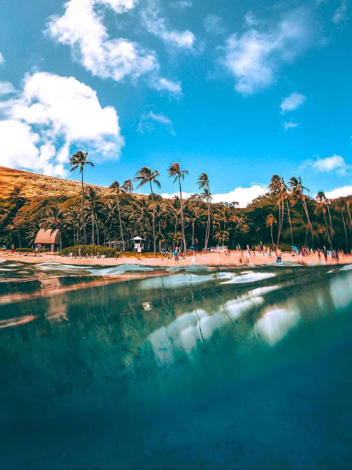 snorkeling near waikiki