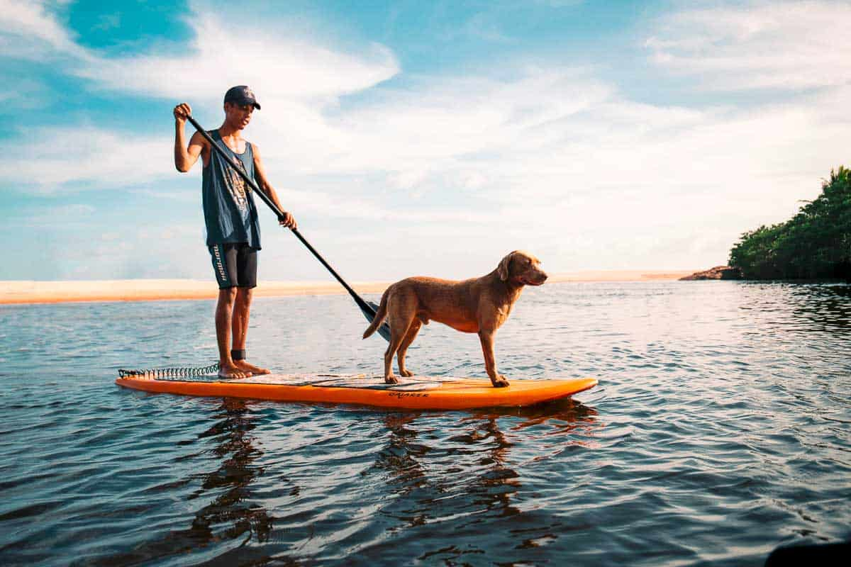 best sup boards for kids