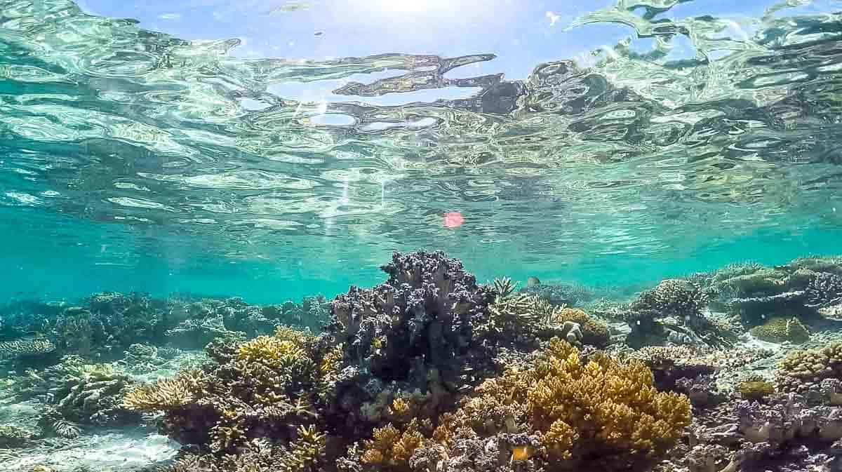 best snorkeling in southeast asia