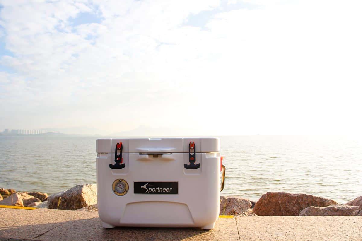 affordable marine cooler 2021